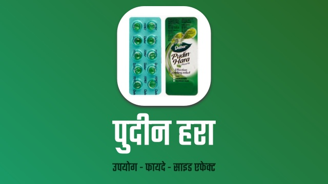 dabur-pudin-hara-in-hindi