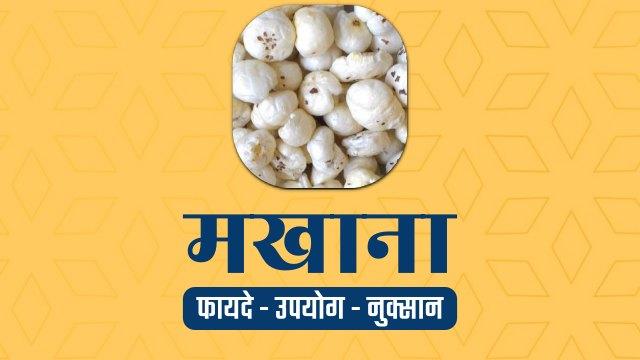 makhana-fox-nut-in-hindi