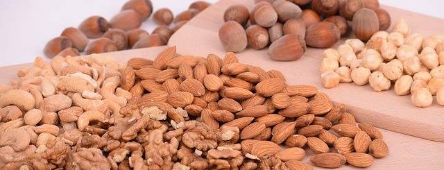 Plant-Protein-in-hindi