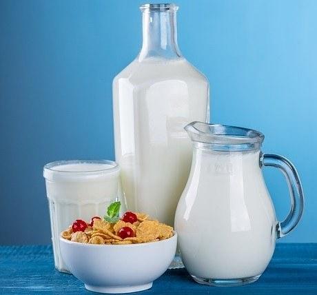 probiotic-foods-in-hindi