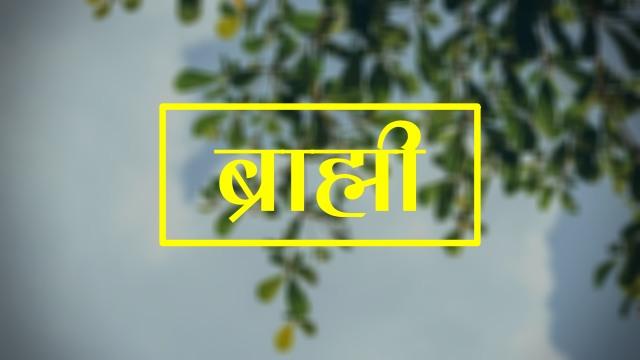 Brahmi in Hindi