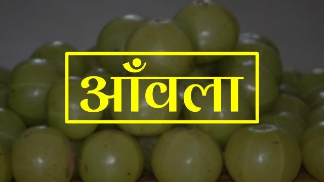 amla in hindi