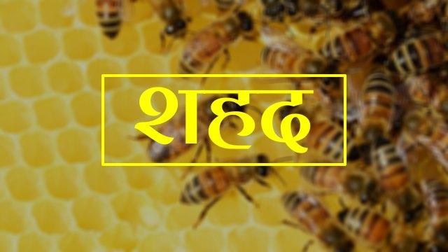 honey in hindi